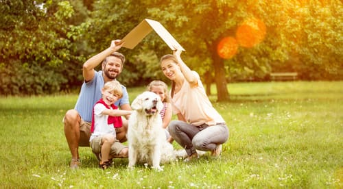 Employee entitlement to emergency or bereavement leave. What happens when a pet dies?